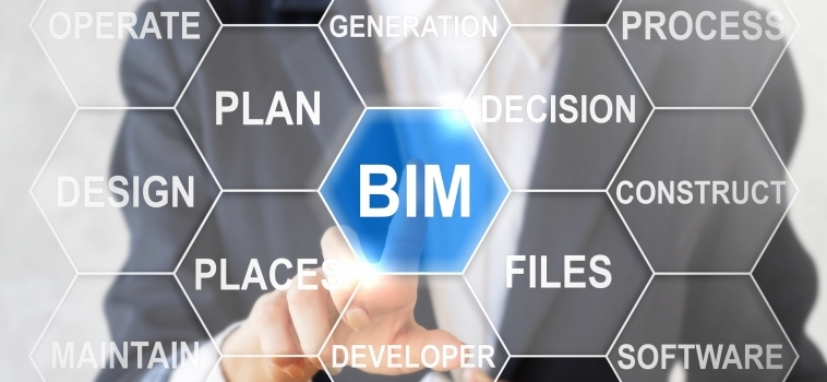Working in BIM Environments
